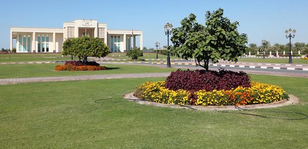 Dubai plant mehr Grünflächen